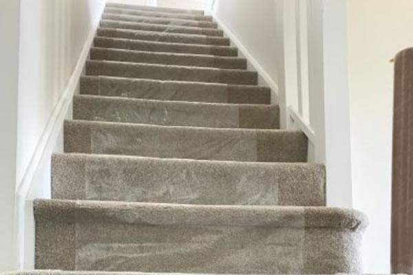 Carpet Removal Protectors