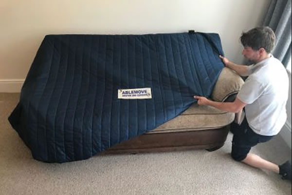 Sofa Chair Removal Protectors